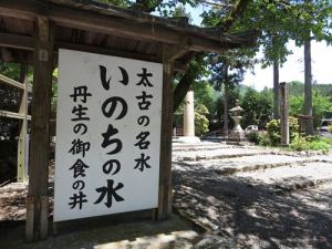 丹生川上神社水